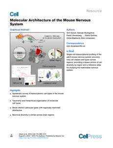 Molecular Architecture of the Mouse Nervous System - UCL